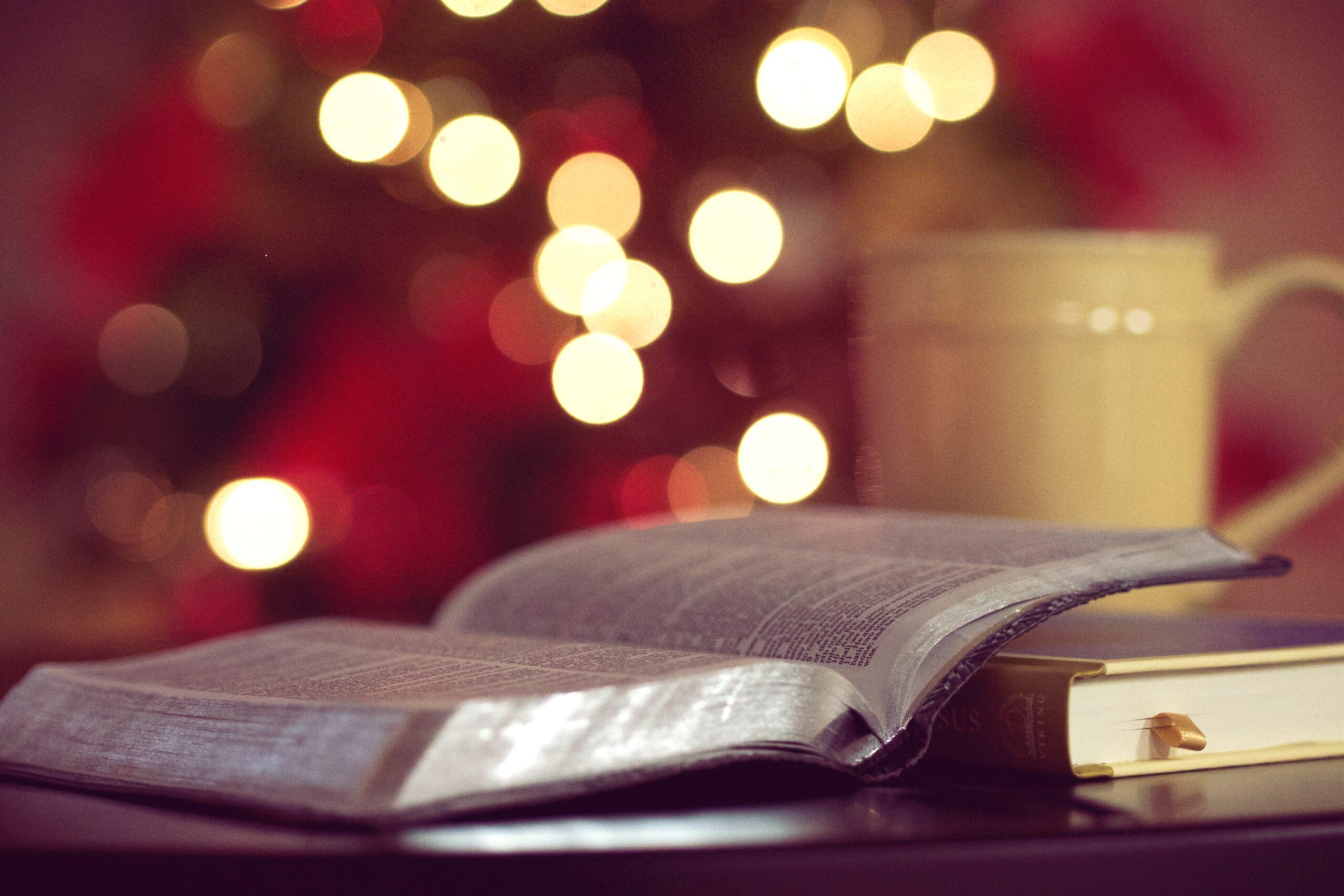 christmas books and entertainment